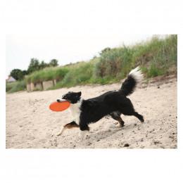 Trixie Dysk dla psa, guma...