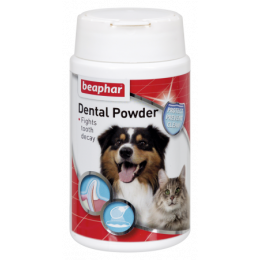 Dental Powder 75g
